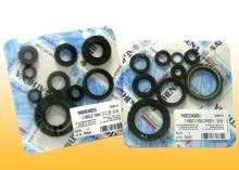 Motor-Dichtring-Kit - P400270400051